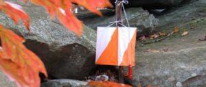 fall orienteering